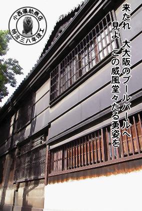 EX07_konishi-back.jpg